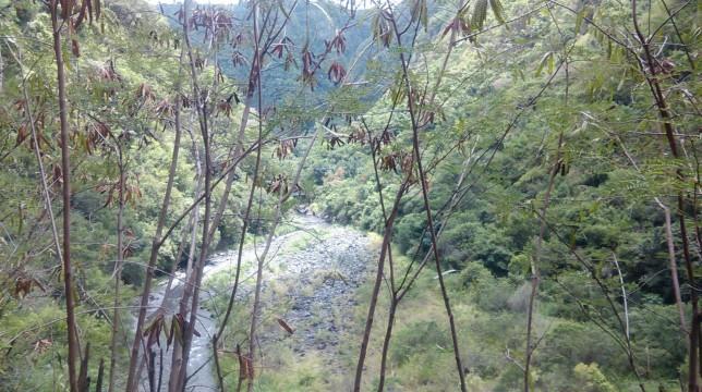 fond de la riviere